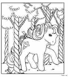 小马驹11